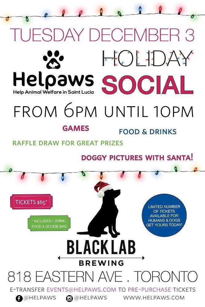 HelpAWS holiday social