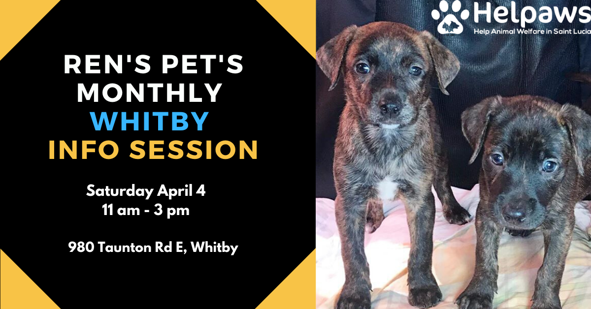 April 4th Ren's Pets Whitby Info Session