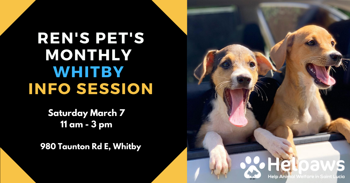 March 7th Ren's Pets Whitby Info Session